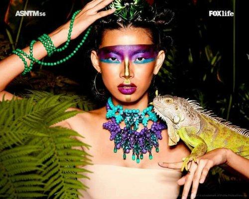 Asia's Next Top Model | PADDYLAST INC
